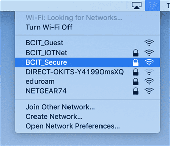 Web snippet of wifi networks.