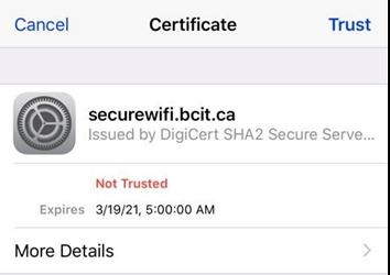 Web snippet of certificate window for ipad, ipod and iphone.