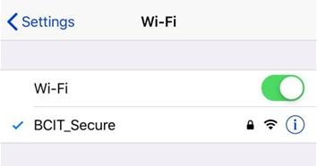 Web snippet of wifi configured settings for ipad, ipod and iphone.